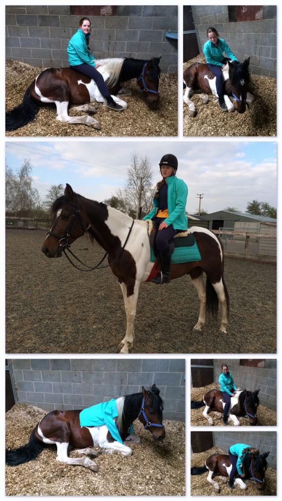 Horse Riding Challenge