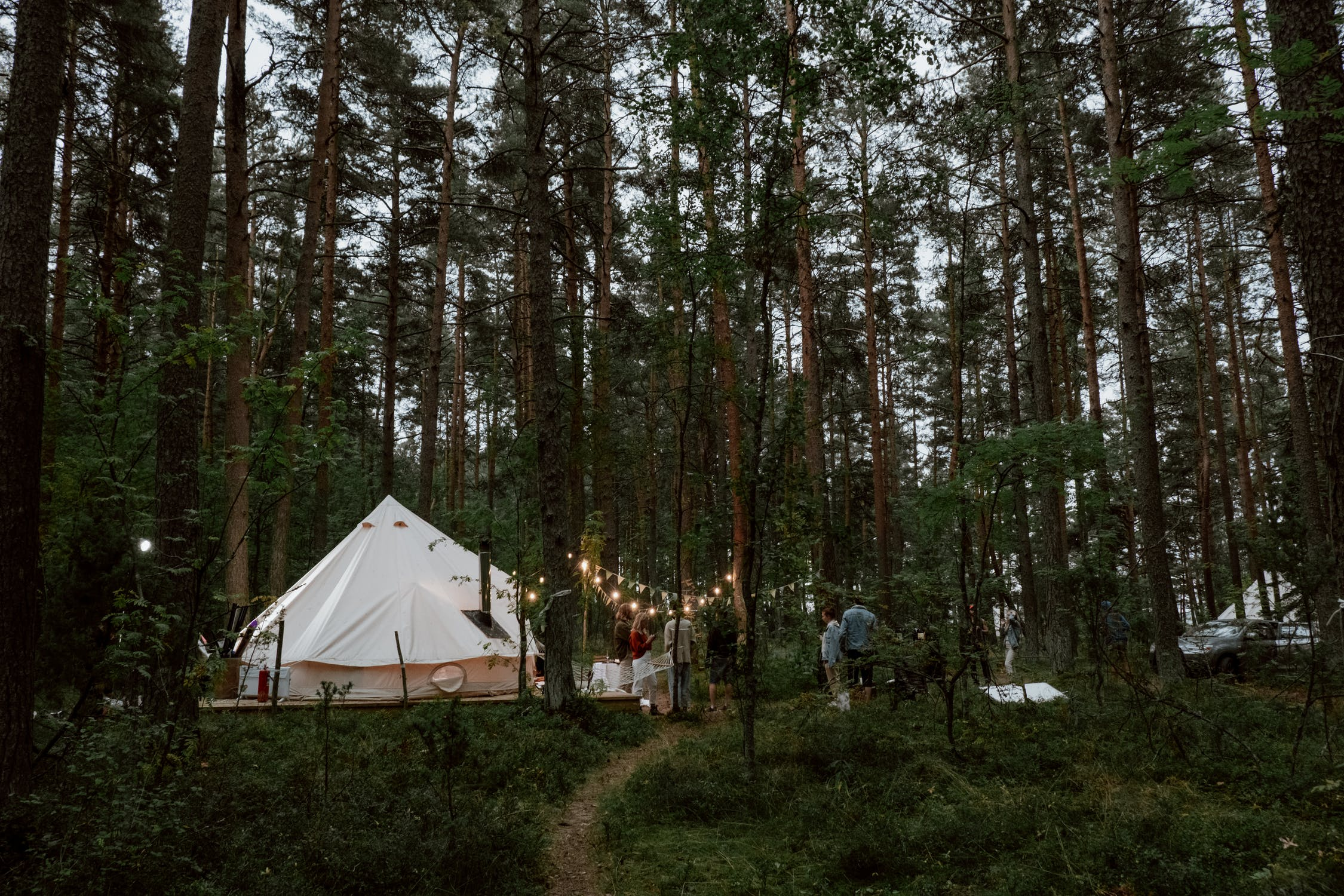 Glamping tent in the forest.